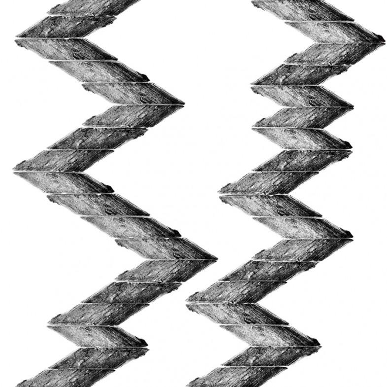 ernesto-oroza-marabu-rayo-2013